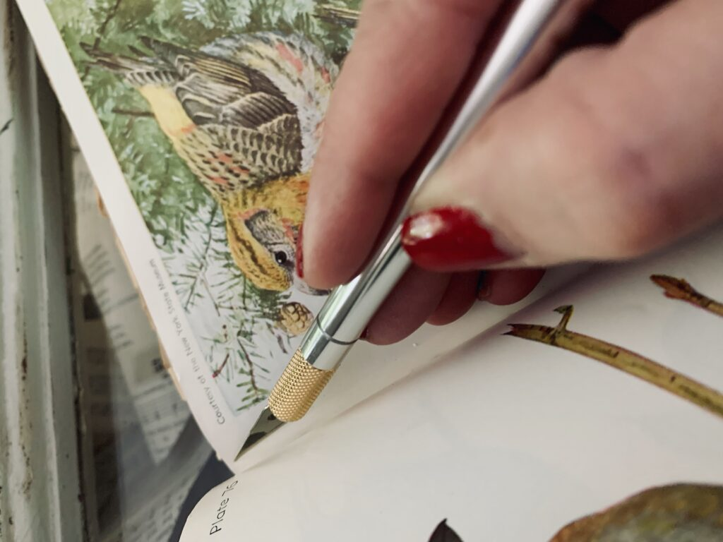 Cutting a book page with an exacto knife