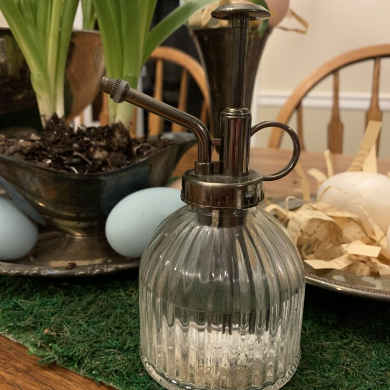 Glass spray bottle used to water indoor plants